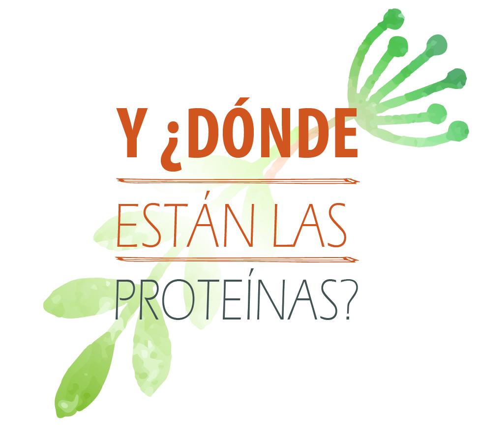 LAS PROTEINAS-03-03
